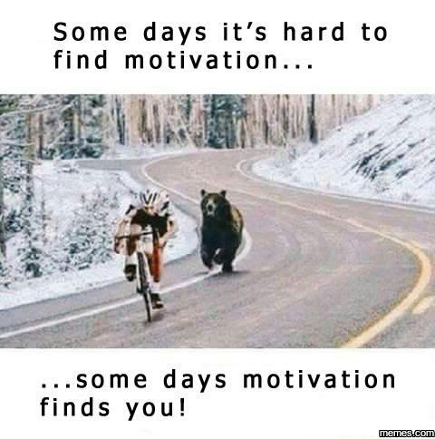 MOTIVATION22.jpg