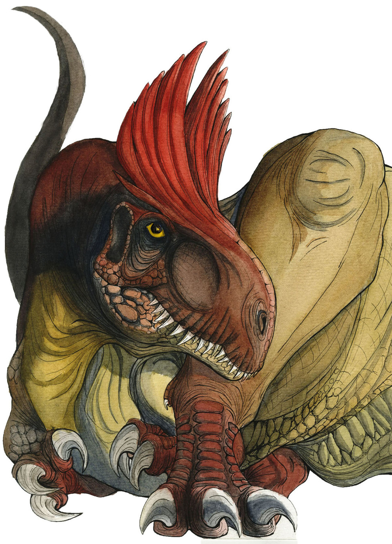 Cryolophosayrus copy.jpg