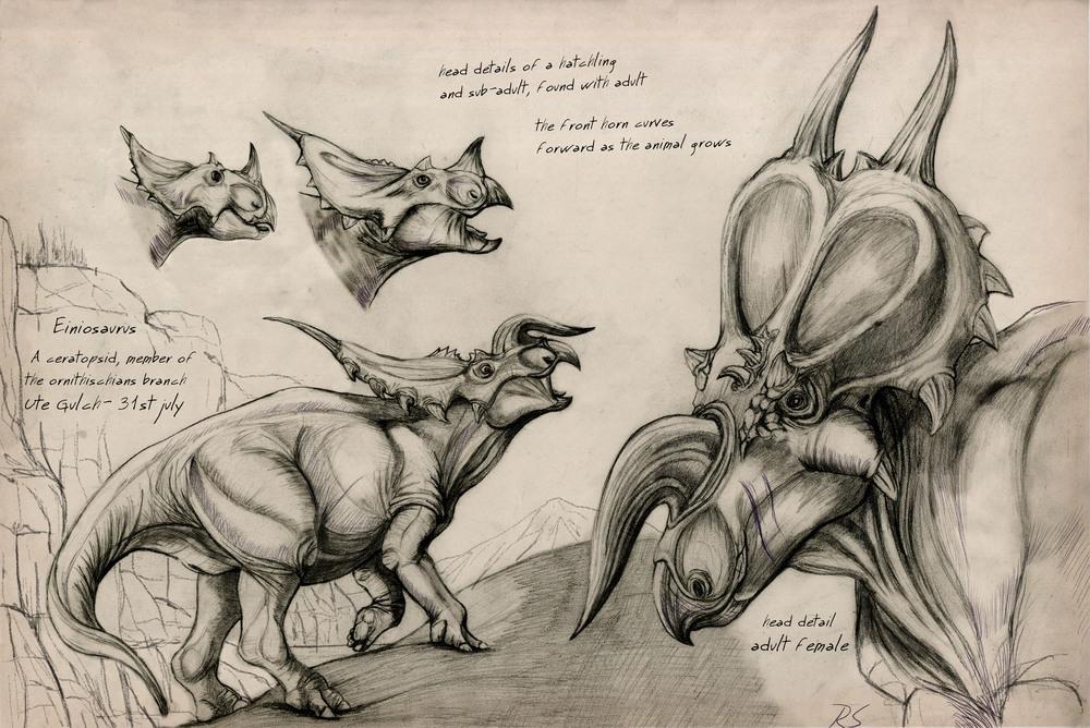 Einiosaurus spread.jpg