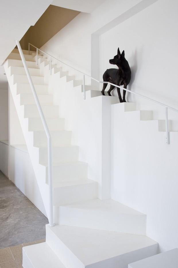 Foto da escada para cachorros - Fonte:http://casavogue.globo.com/Arquitetura/noticia/2013/07/casa-cachorros-escada.htm