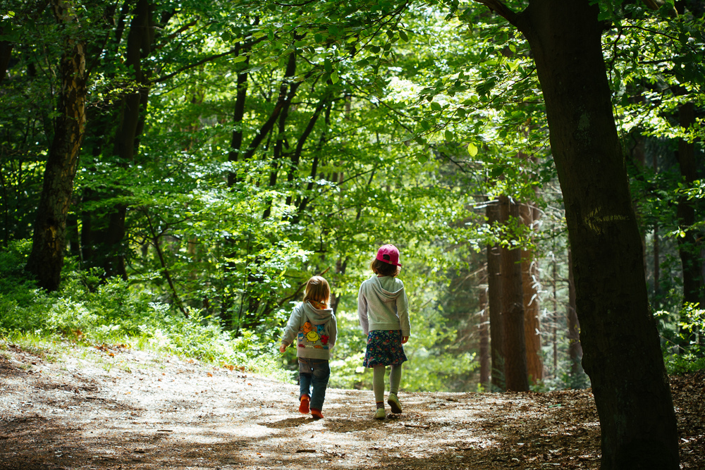 Adventures Ahead - Marit and Viggo in the Forest