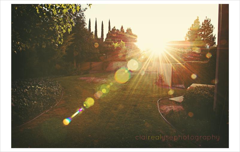 sunflare in northridge