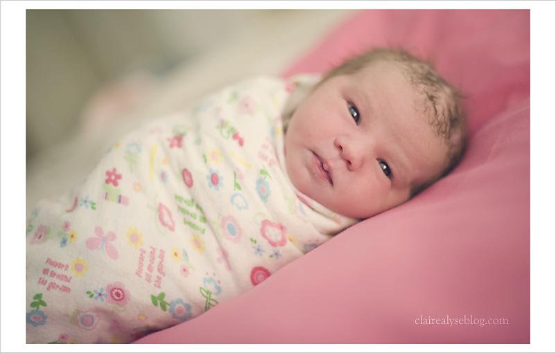 ventura newborn photographer