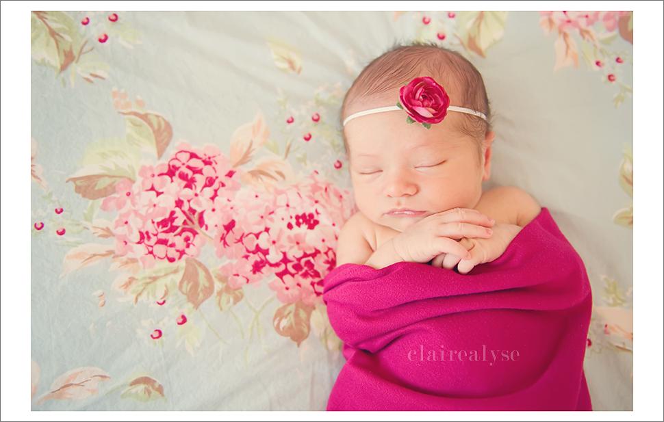 malibu newborn photographer