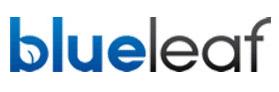 Blueleaf.jpg