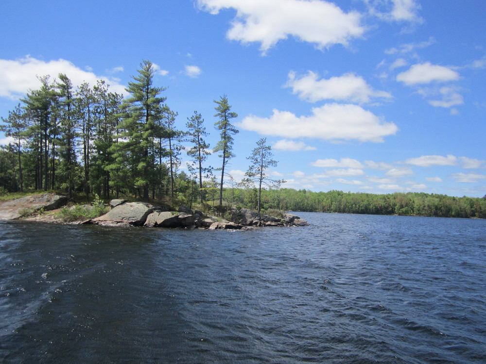 Bookmark Executive Assistant Kate Burgess loves to get some summer reading in while camping. Joe Perry Lake in Bon Echo Provincial Park is a favourite spot.