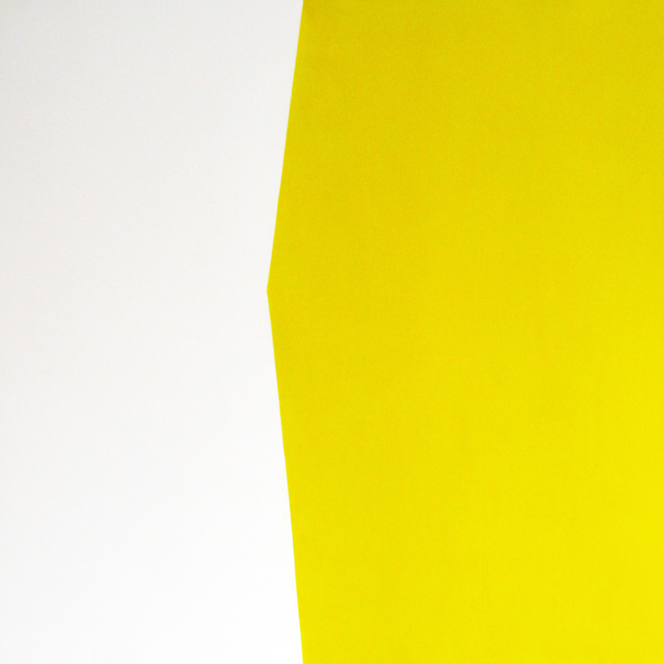 Richman-Yellow and White_web.jpg