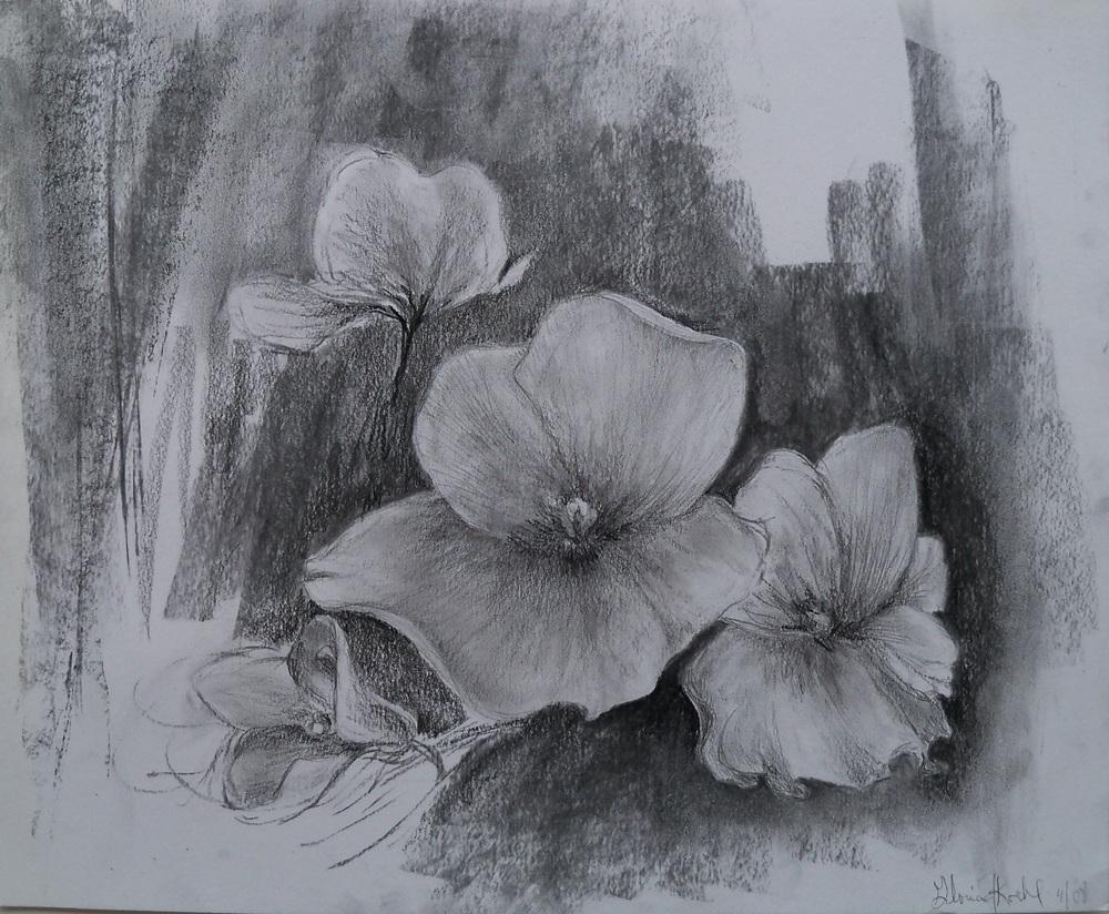 Violet Study