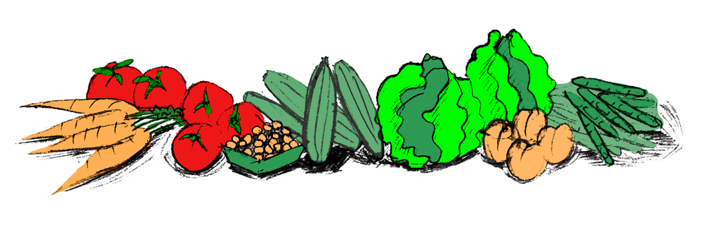 Brannachelle_Veggie_Illustration.jpg