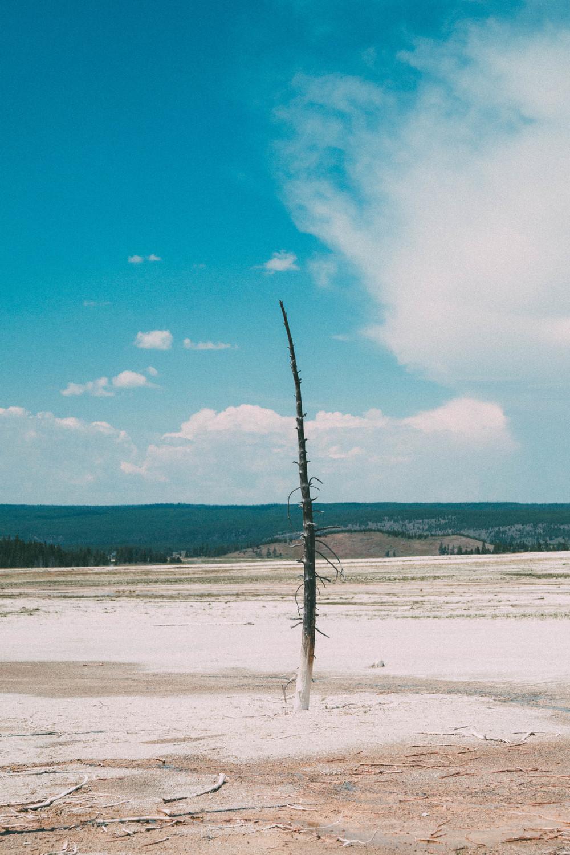 20150629-Yellowstone-1750-Edit.jpg