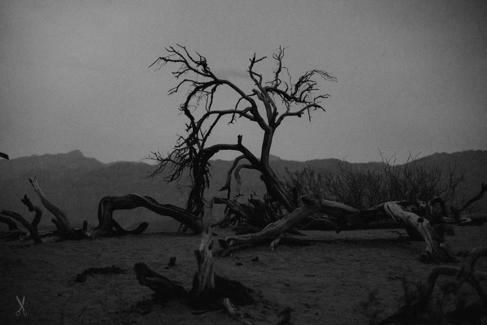 20160408-DeathValleyDay2-004-2.jpg
