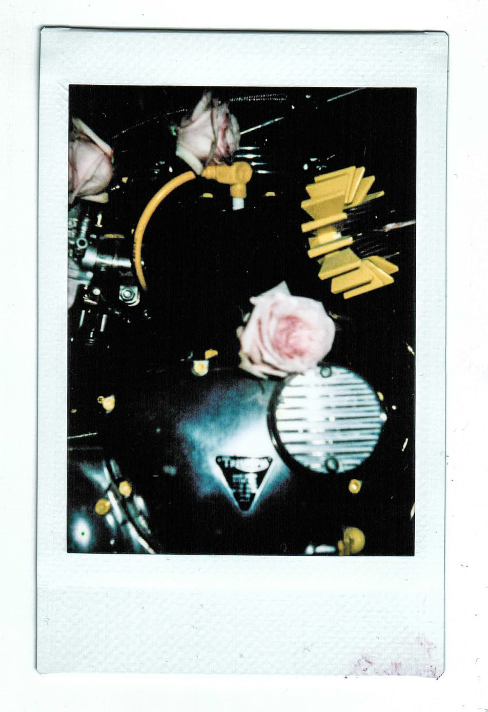 Polaroid-063.jpg
