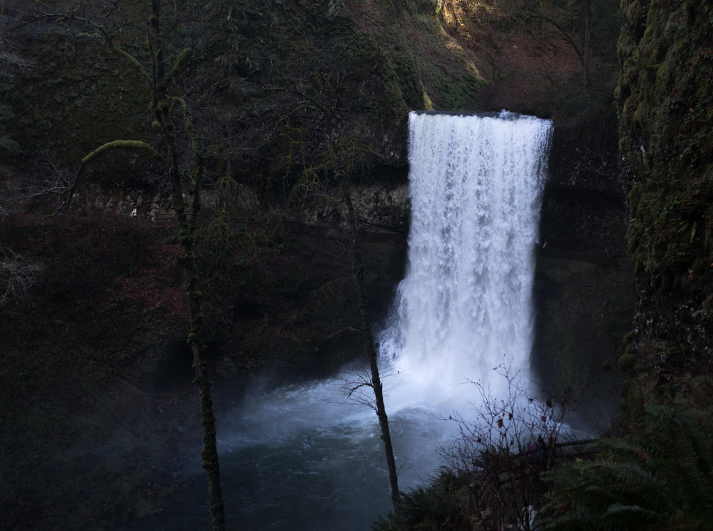 SILVER FALLS STATE PARK /// TRAIL OF TEN FALLS