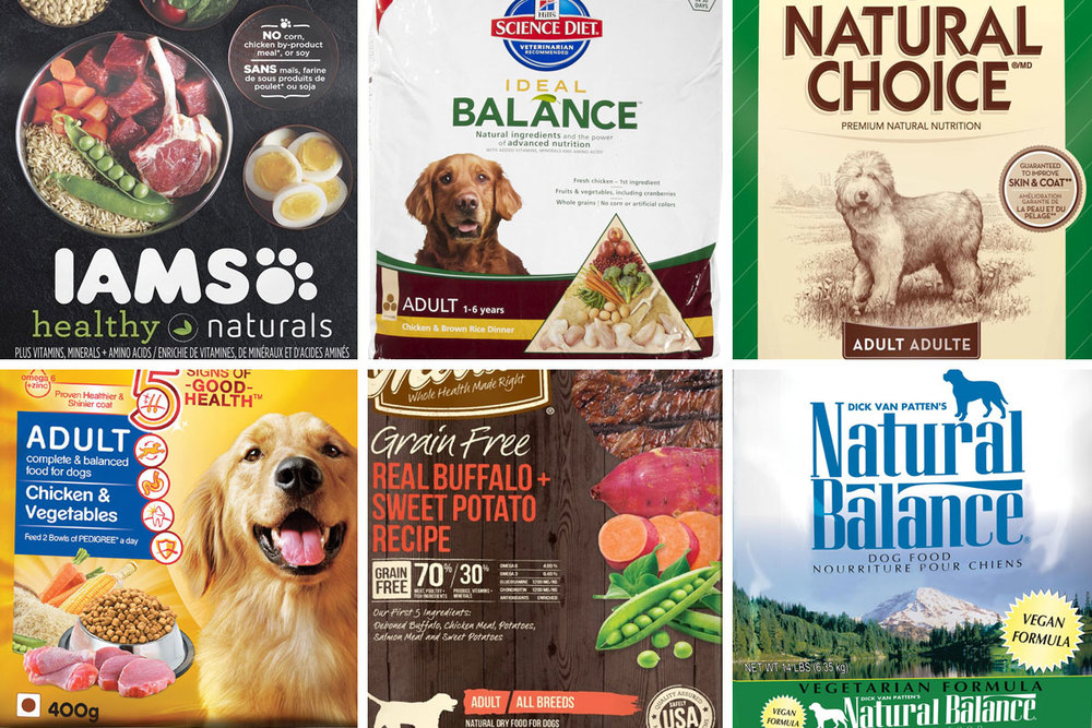 Whats The Best Diet For My Dog One Dog Food Company Is