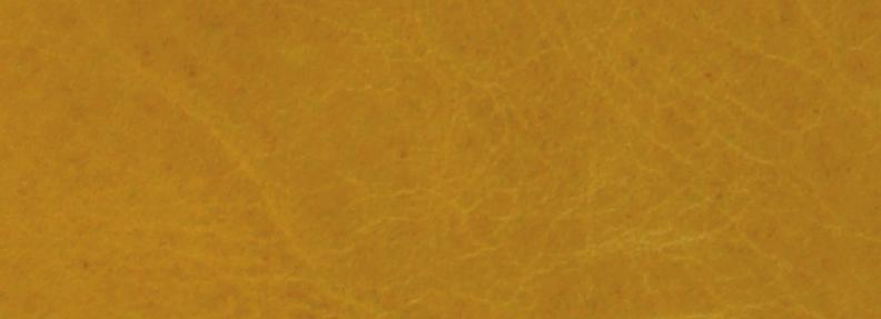 Mustard NL