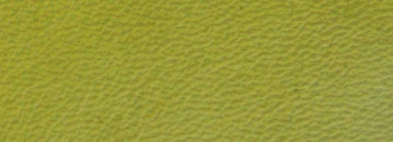 Lime NL
