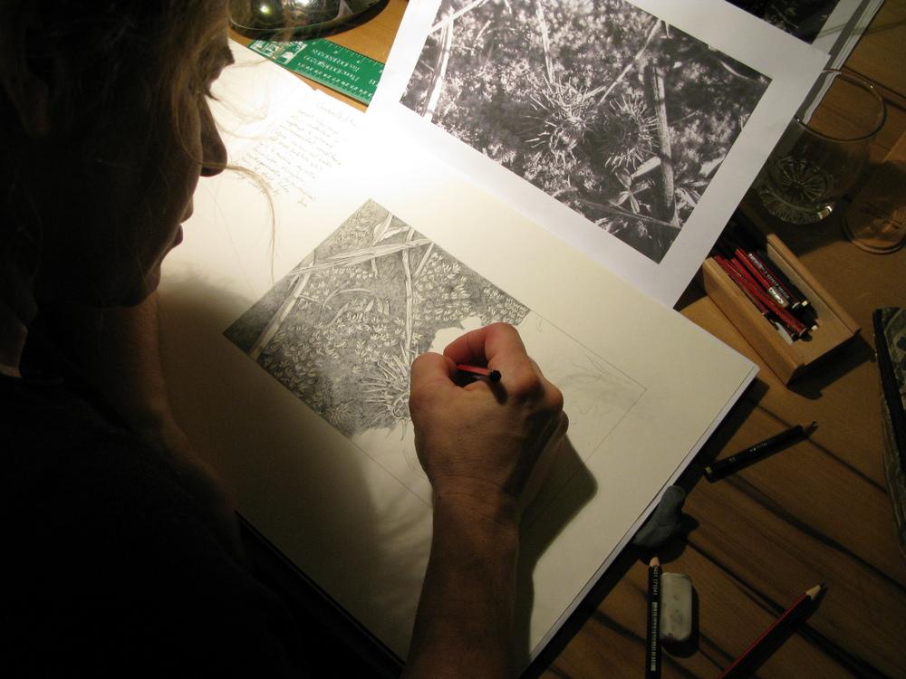 Natalie sketching ideas