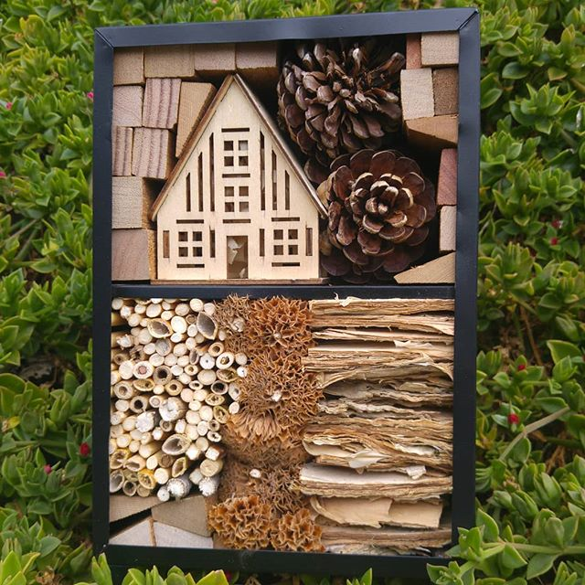 Been making insect hotels. #Natural. #naturedesign #natureza #australian