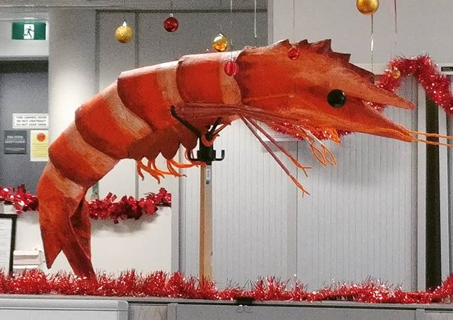 Latest sculpture: a big prawn pinata. Every office Christmas party needs one?