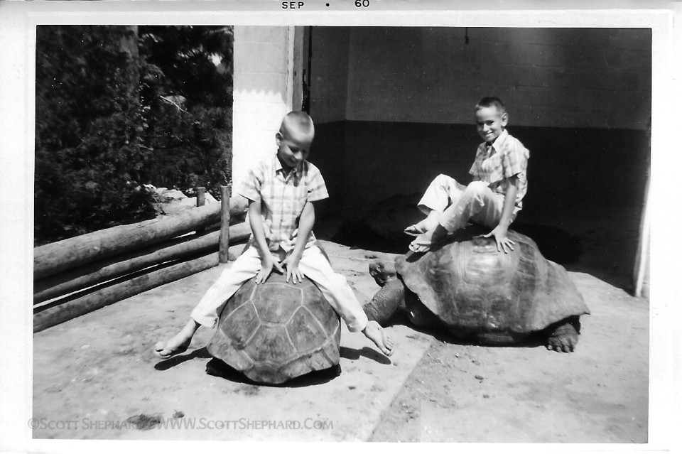 01-07-12 Scott & Mike    That's me on the left (sitting backwards on the big tortoise) and my brother Mike on the right. I…    View Post    shared via  WordPress.com