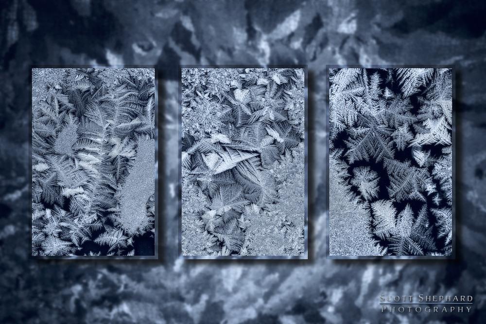 2014 01-05 Frosty Triptych by Watertown, South Dakota, photographer Scott Shephard