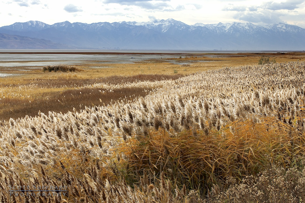 2013 11-01 A View East from Antelope Island (Great Salt Lake) by Scott Shephard