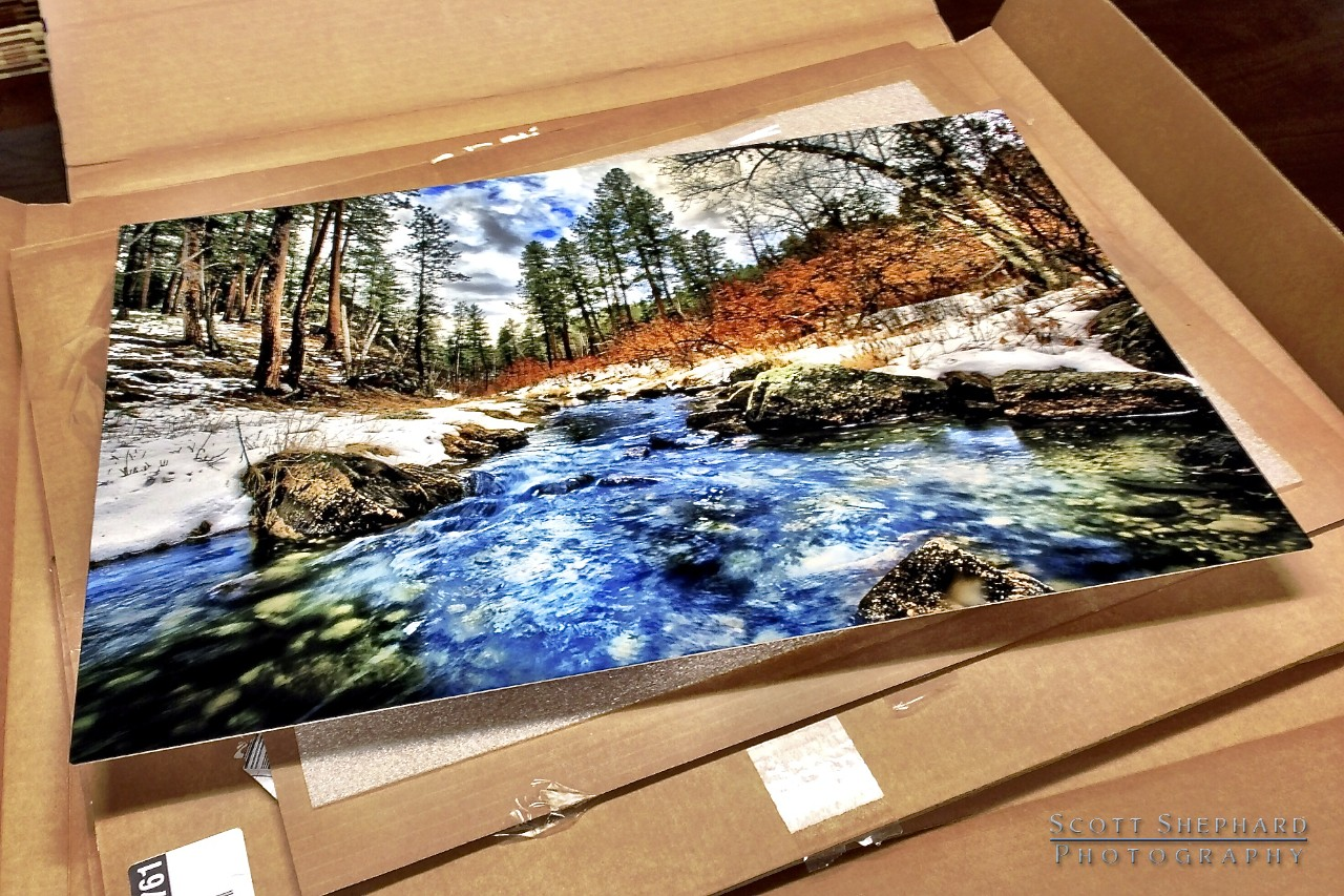 2013 11-14 Festival of Trees Print Is Here!