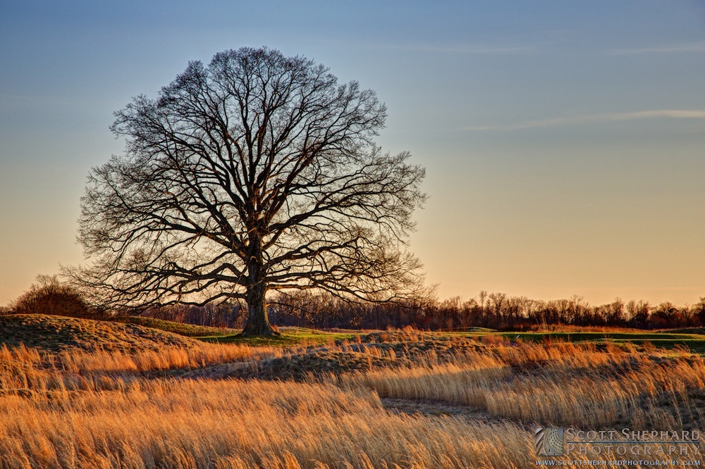 2014 04-01 The Golden Hour by Watertown, South Dakota, photographer Scott Shepahrd