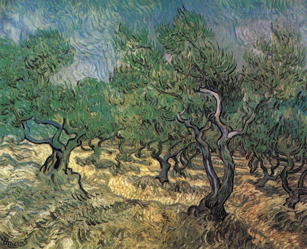 Van Gogh Olive Trees.jpg
