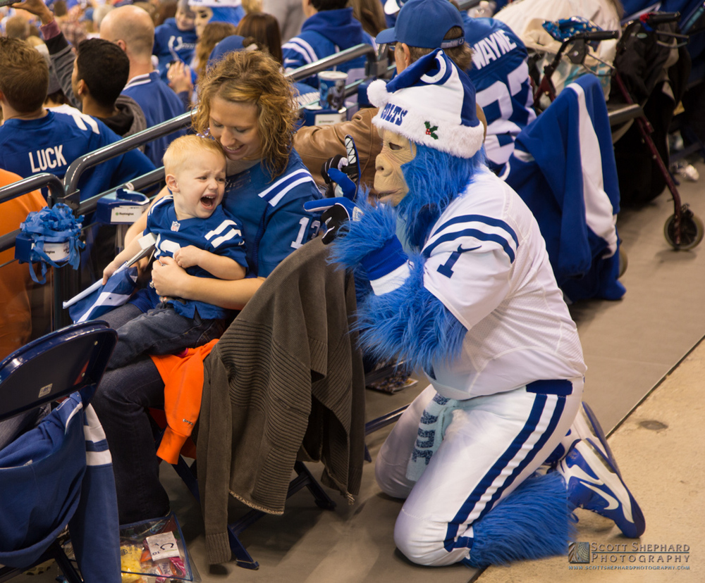 Inidanapolis Colts game.jpg