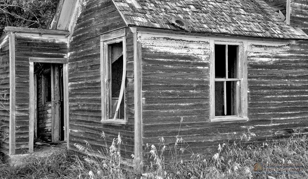 2014 02-28 Abandoned