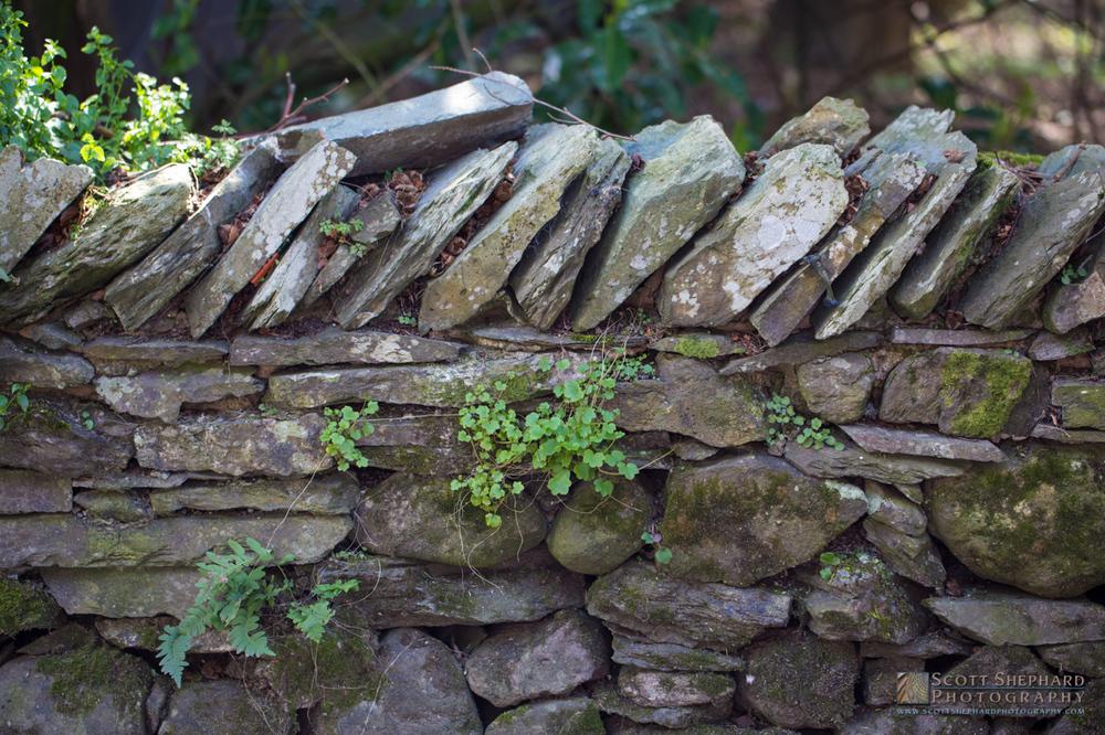 English Stone Wall - Grasmere.jpg