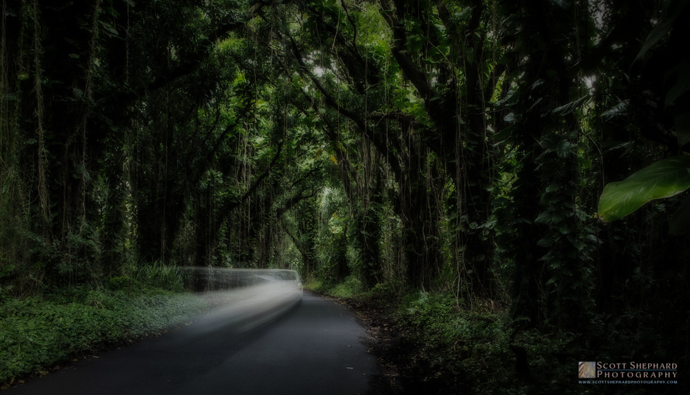Pohoiko Road - Big Island, Hawaii.jpg
