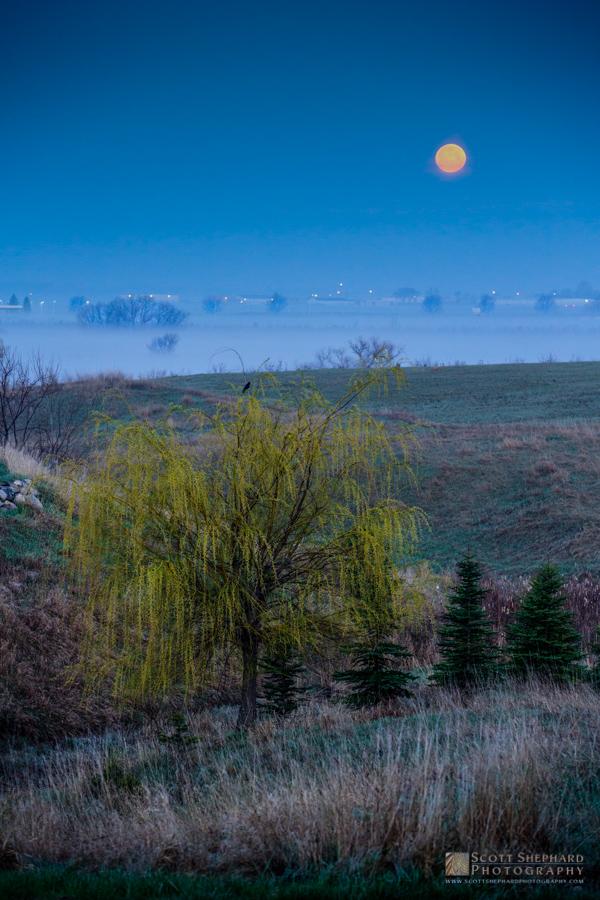 Moon and Fog.jpg