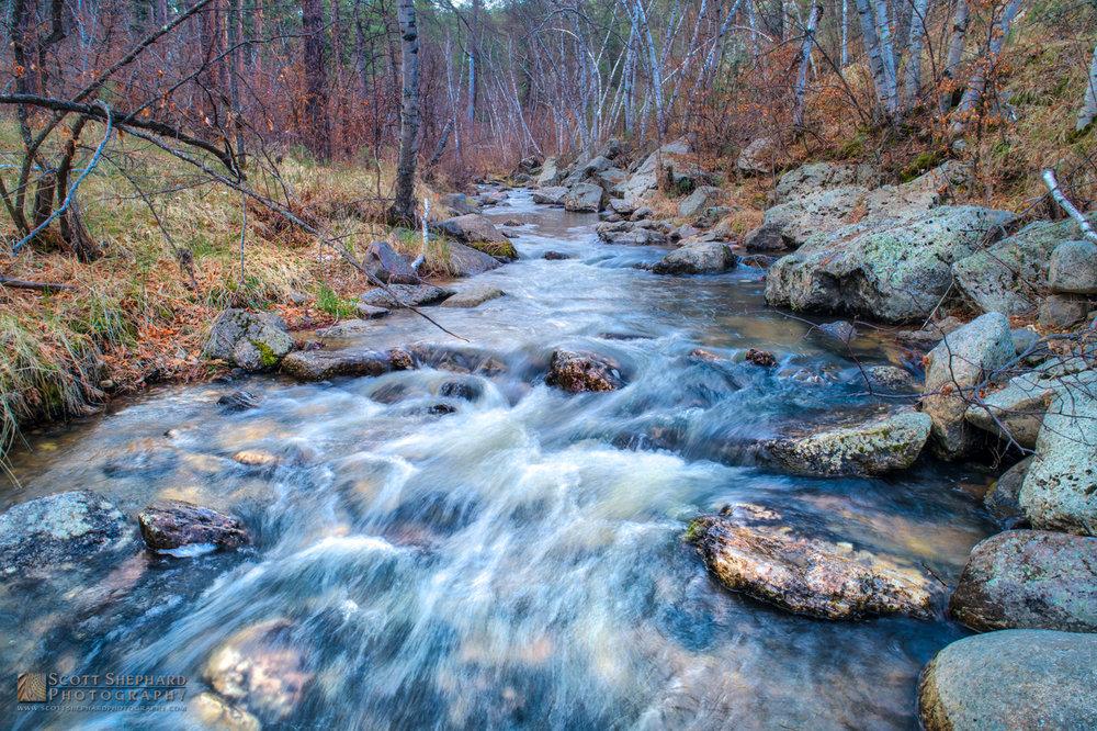 Iron Creek - Black Hills, SD.jpg