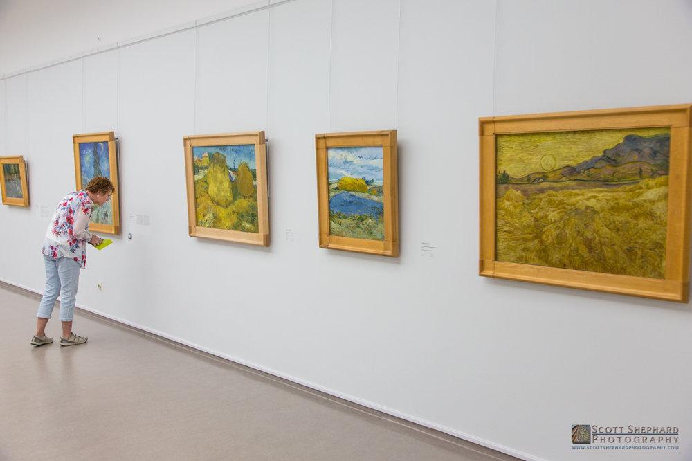Vincent Van Gogh Collection.jpg