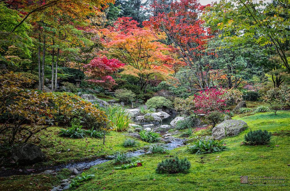 19.01.08 Japanese Garden - Seattle.jpg