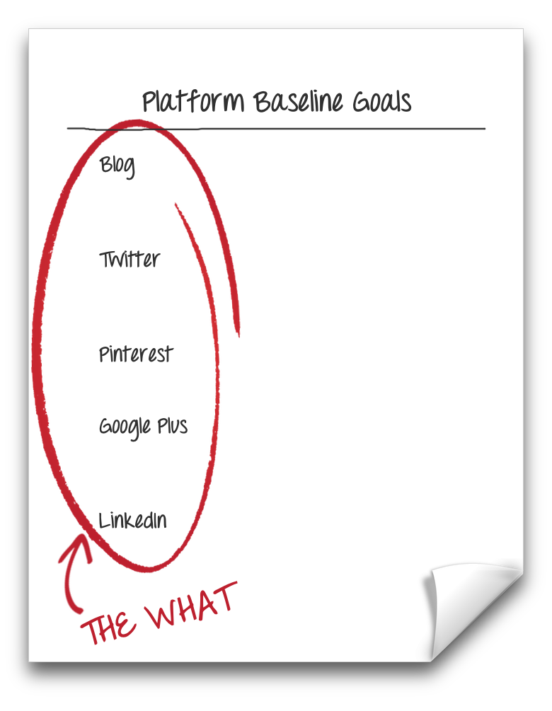 """The What"" of your platforms's baseline goals. 