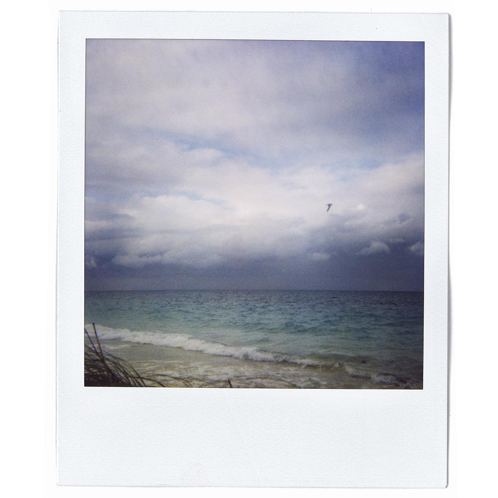Polaroid01.jpg