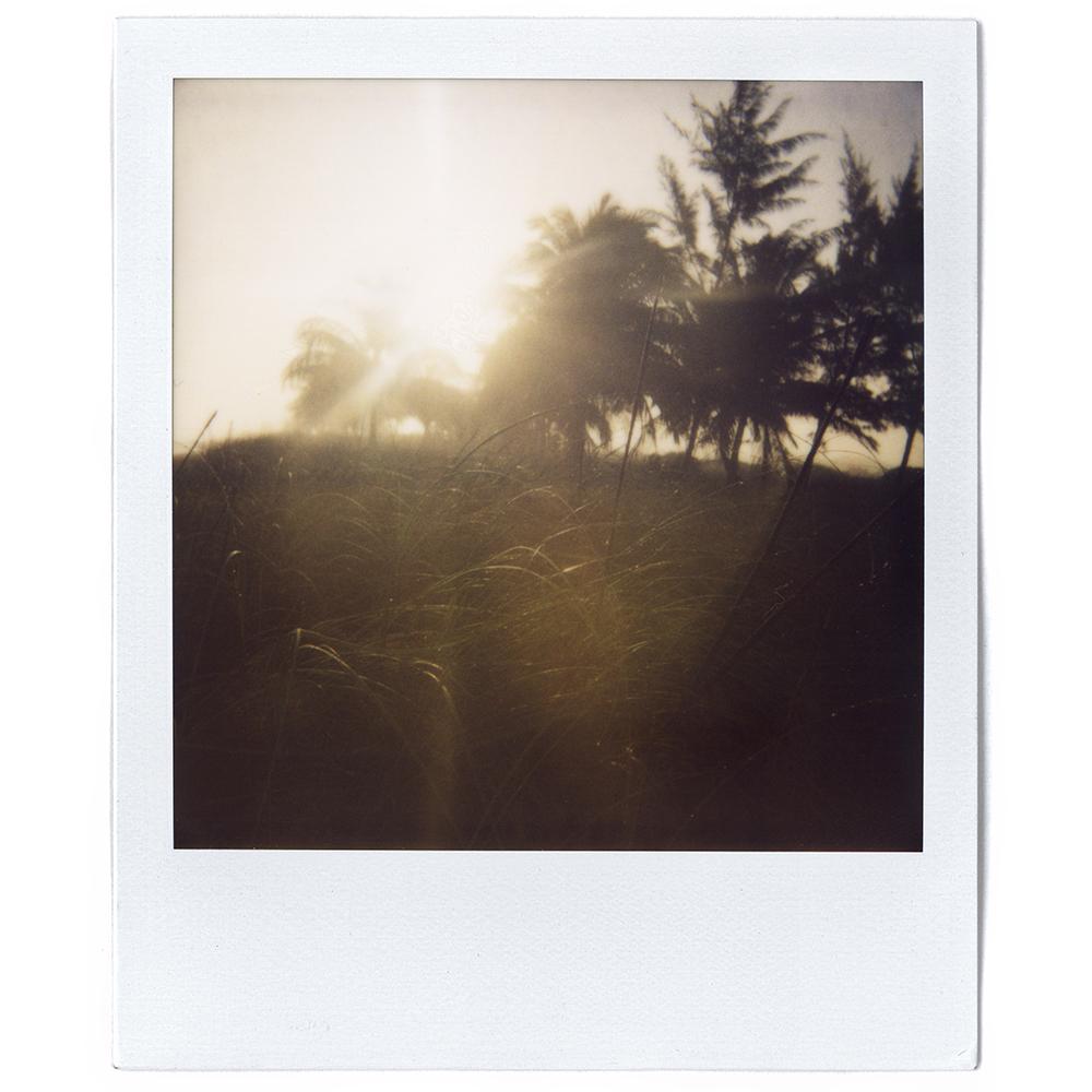 Polaroid04.jpg