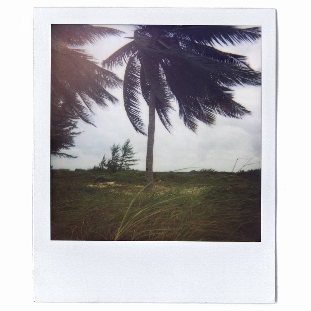 Polaroid06.jpg