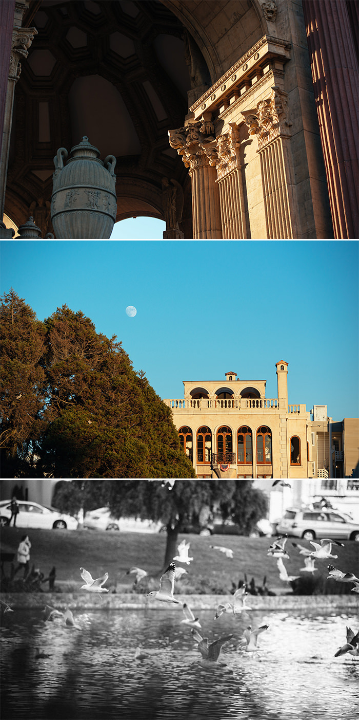 Palace of Fine Arts Proposal Photography 1.jpg