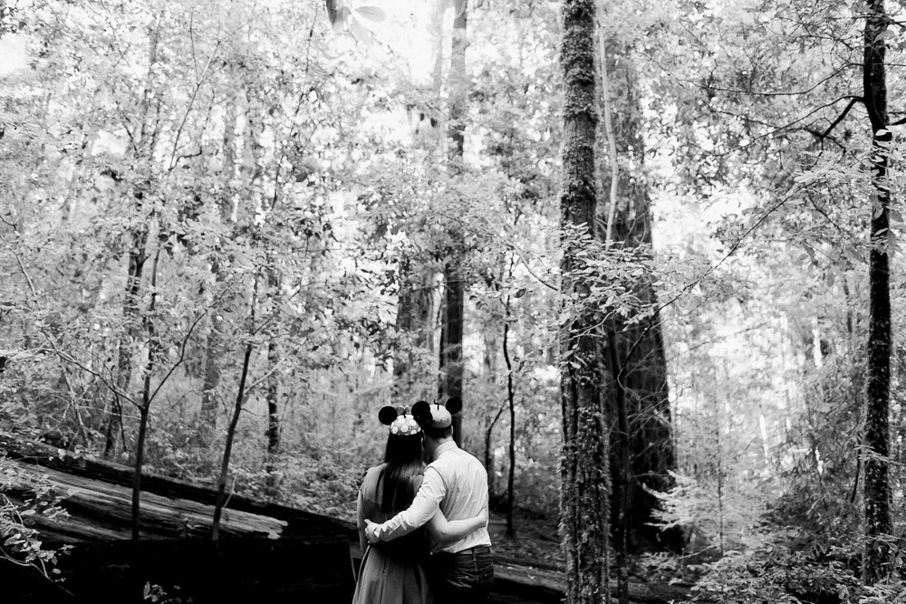 BIg Basin Redwoods State Park Engagement Session 003.jpg