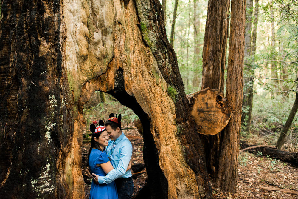 BIg Basin Redwoods State Park Engagement Session 004.jpg