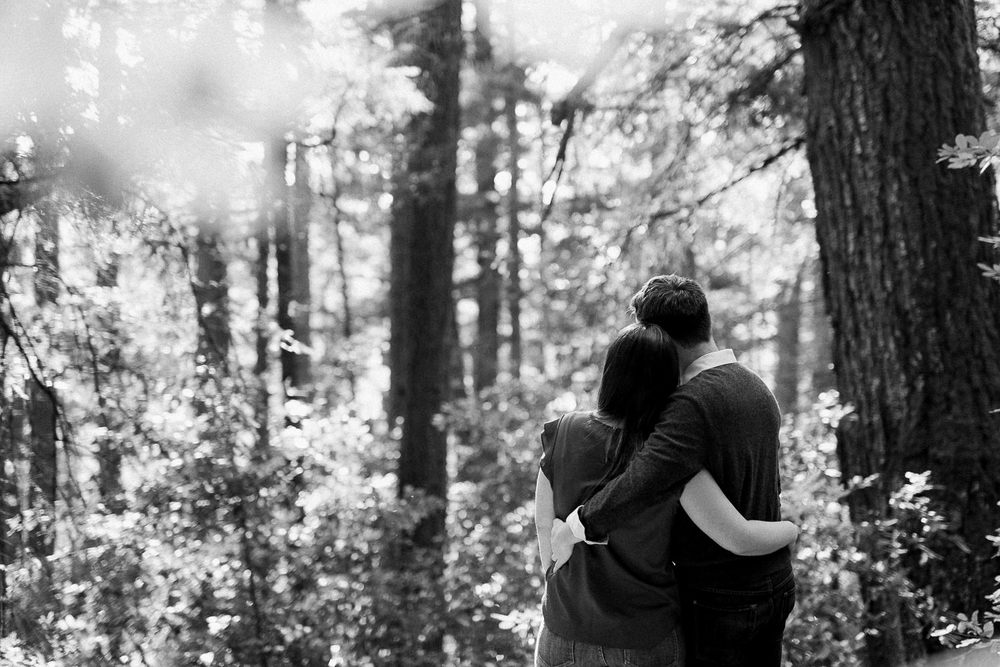 BIg Basin Redwoods State Park Engagement Session 020.jpg
