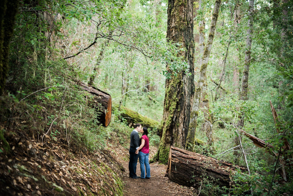 BIg Basin Redwoods State Park Engagement Session 023.jpg