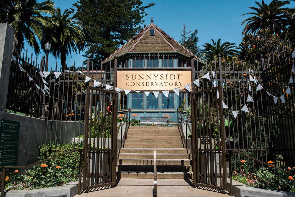 Sunnyside Conservatory Wedding-15.jpg