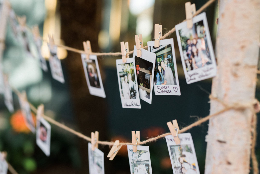 Sunnyside Conservatory Wedding-51.jpg