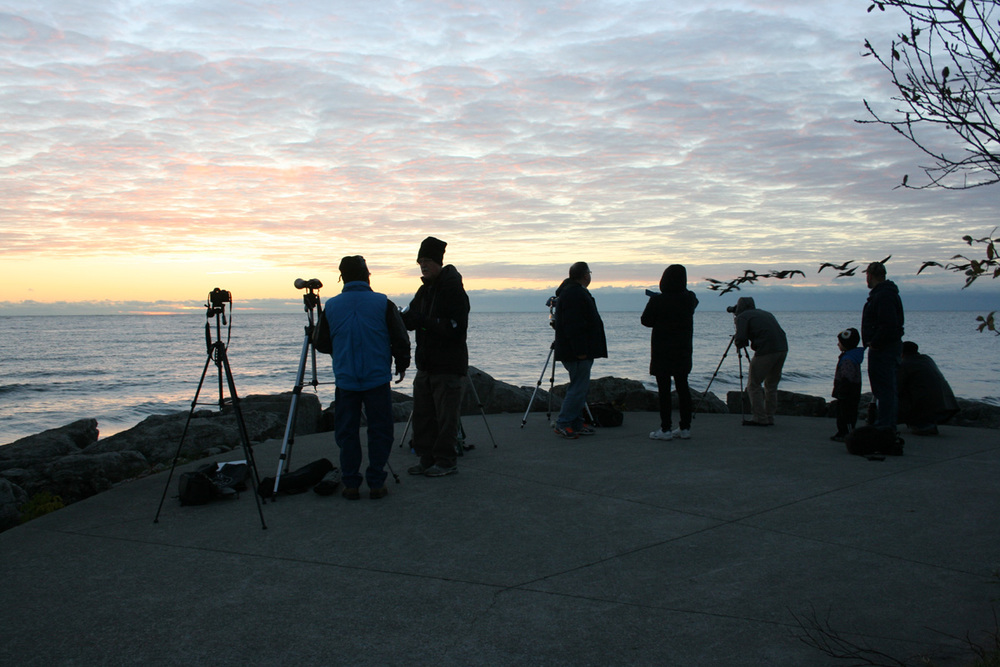 Waiting for sunrise at Jack Darling Park, Mississauga. Photo by Liz Malicki