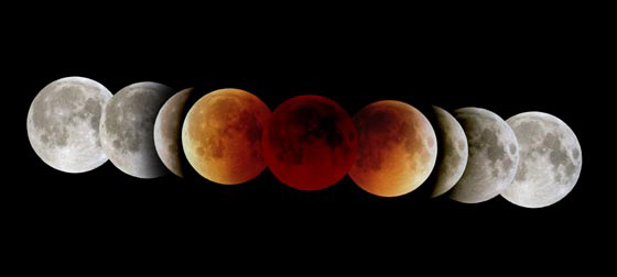 The various phases of a total lunar eclipse - photo by Fred Espenak